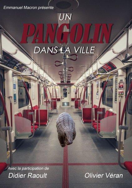 Un-pangolin-dans-la-ville-Nina-MOREAU